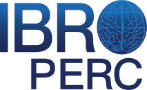 IBRO PERC Logo transparent